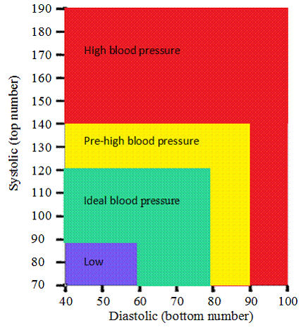 blood pressure mapping