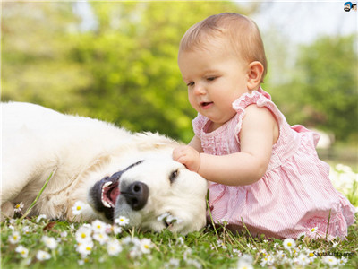 Life is beautiful with kids and pets around.